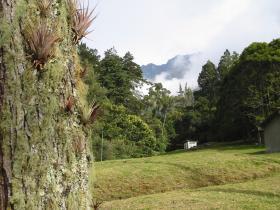 Bild: Merida (1500m) - Weihnachten in den Anden