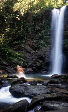 Bild: Northern Range - Eingetaucht in unberuehrte Natur und tiefen Dschungel